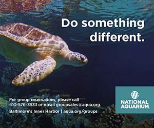 National Aquarium | Do Something Different | Baltimore's Inner Harbor